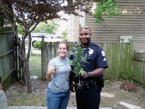 legalizacion-mariguana