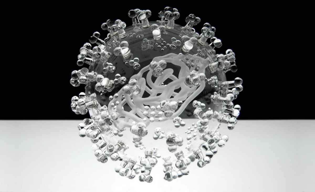 virus-vidrio