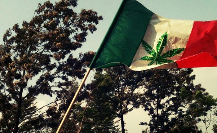 mexico-debate-marihuana