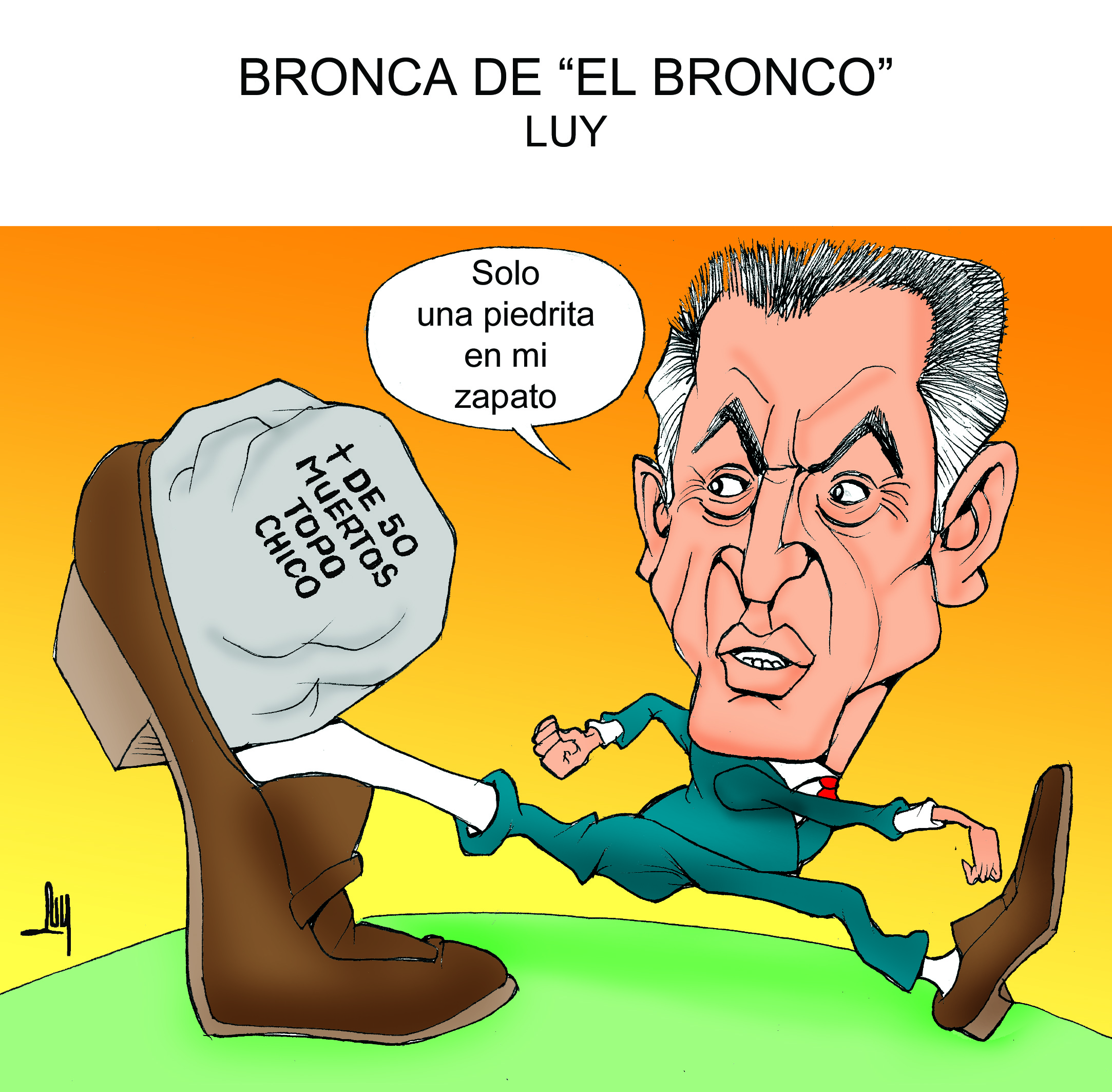 bronca-bronco