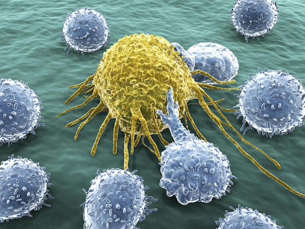 origen-del-cancer