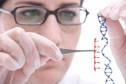 manipulacion-genetica