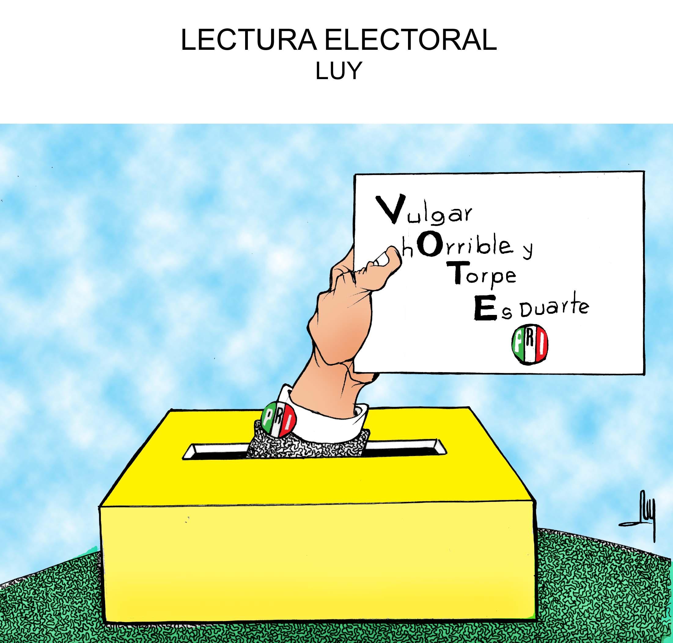 lectura-electoral