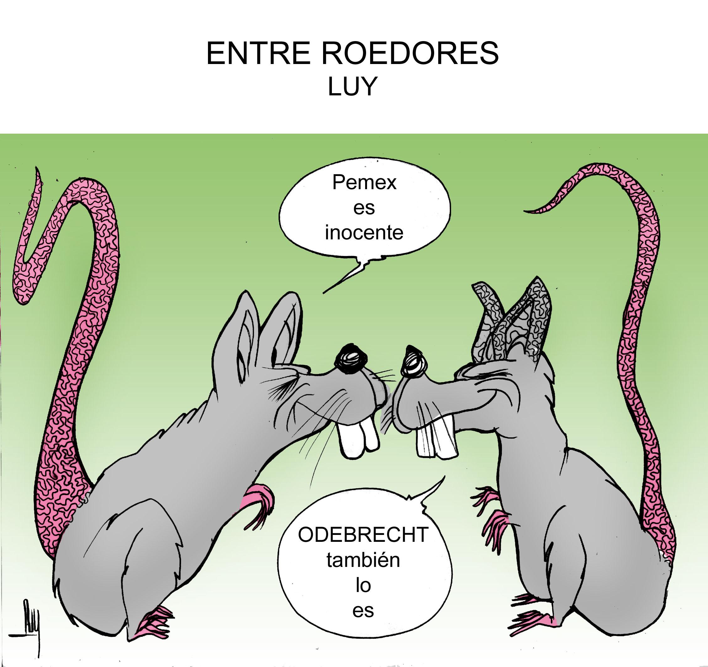 entre-roedores