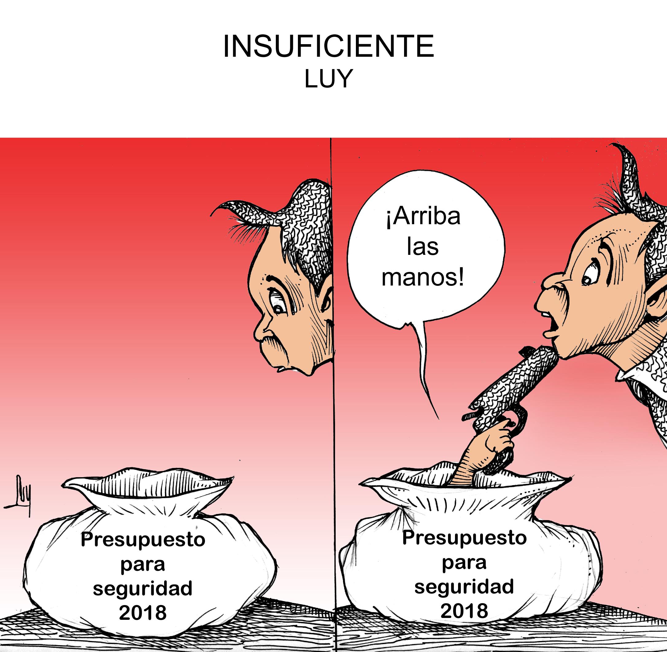 insuficiente