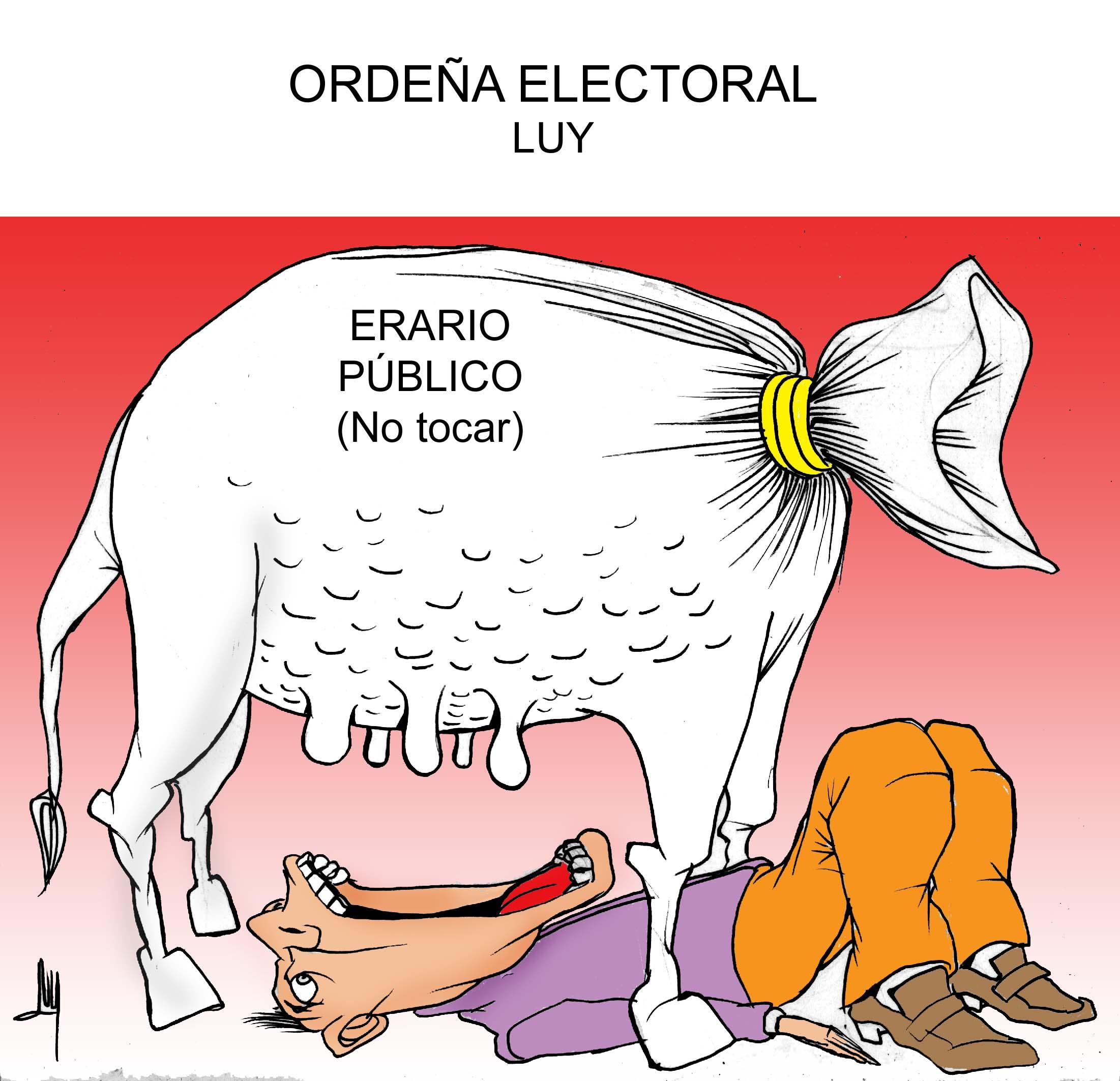 ordena-electoral