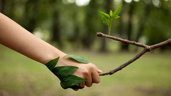 candidatos-medio-ambiente