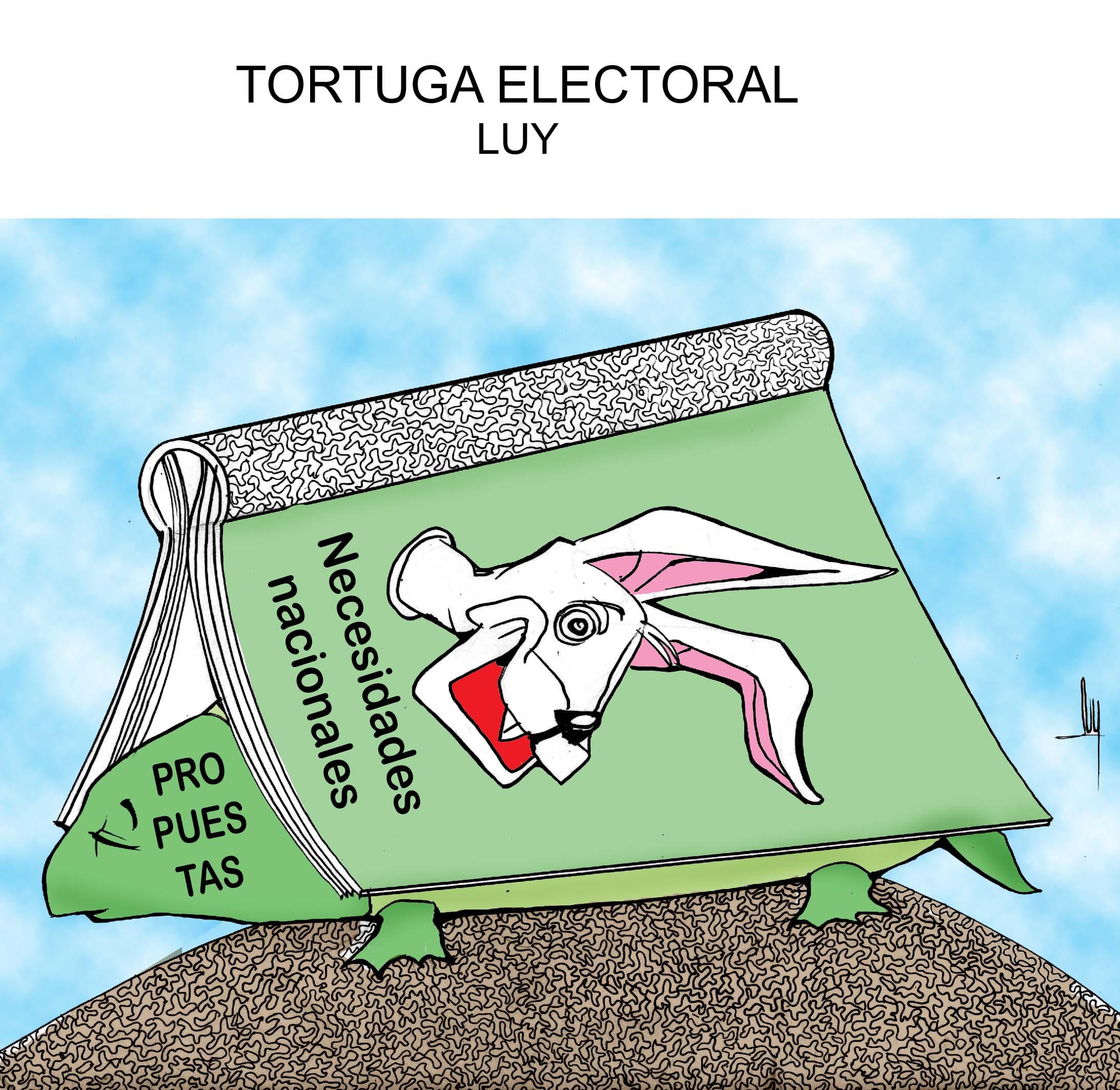 tortuga-electoral