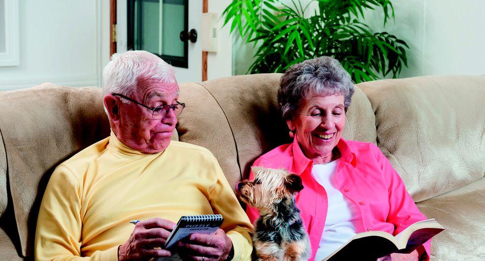 perro y abuelos