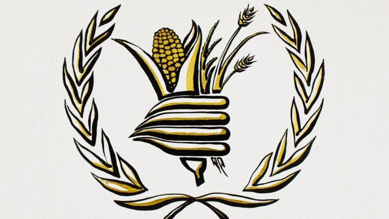 Programa ONU Alimentos