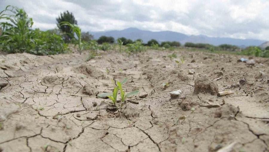 Sequía en el Sur de Nuevo León