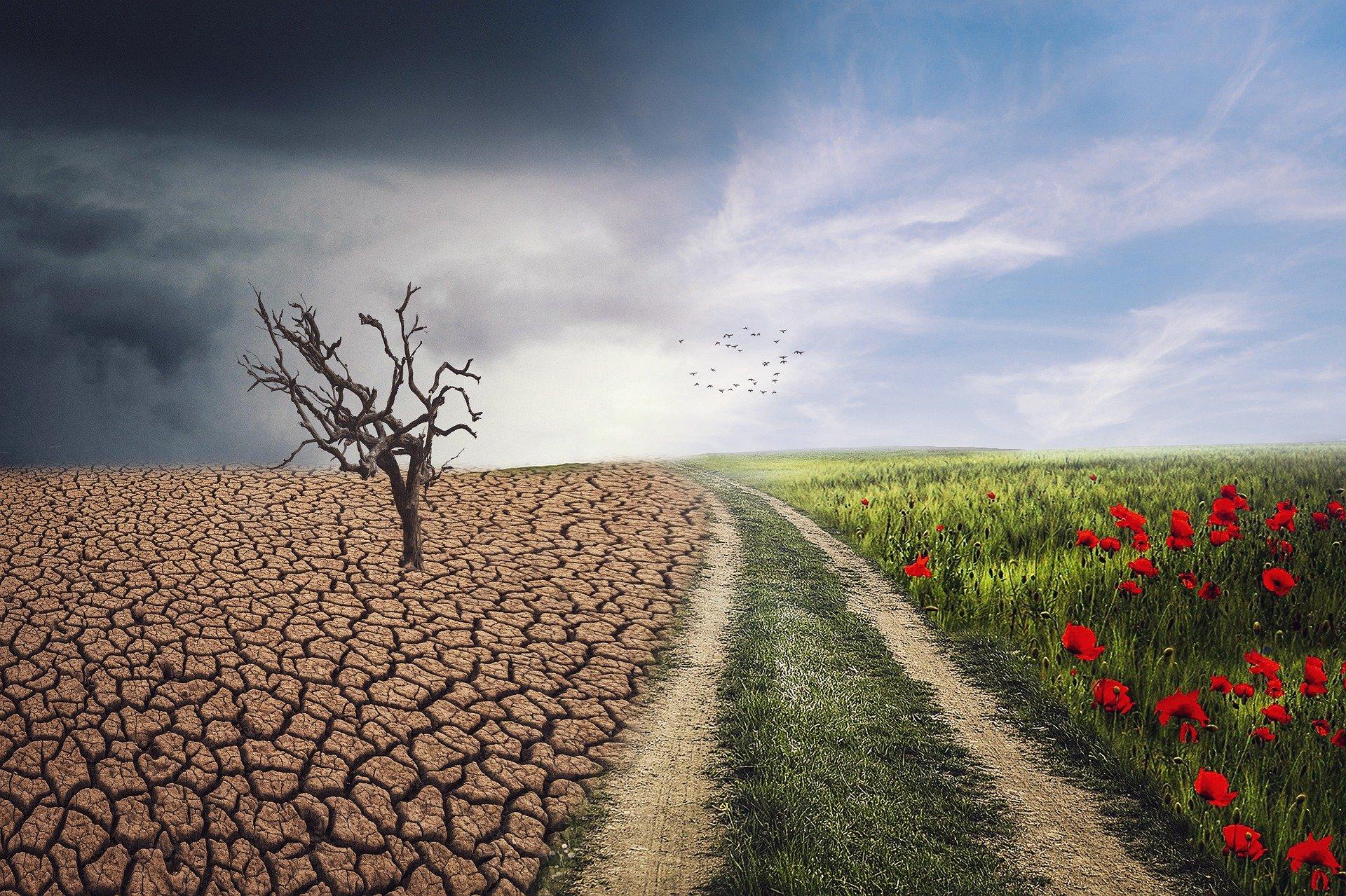 EL CAMBIO CLIMÁTICO ¿CUÁNDO FUE?